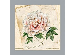 DECOUPAGE AND ACCESSOIRES A set of 5 different designer napkins: floral motifs