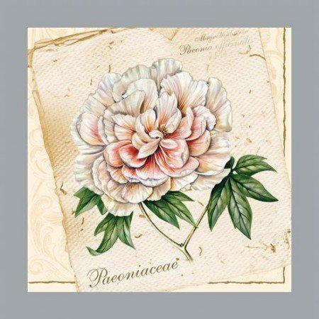 DECOUPAGE AND ACCESSOIRES Ein Set mit 5 verschiedene Designerservietten: Blumenmotiven