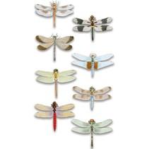 Luxus 3D Aufkleber Libelle, dimensional