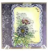 Heartfelt Creations aus USA EXCLUSIVE HEARTFELT aus den USA!