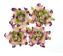 BLUMEN (MINI) UND ACCESOIRES Gardenia 5 cm, 4 stykker, 2 farver, Lilla / grøn