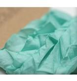DEKOBAND / RIBBONS / RUBANS ... Aquamarine lamentable 10mm cinta 1m
