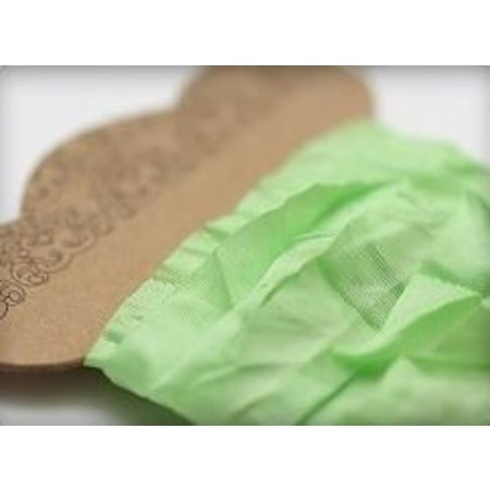 DEKOBAND / RIBBONS / RUBANS ... Shabby Fresh Green Ribbon 10 mm, 1 m