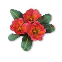 Stanz- und Prägeschablone, Sizzix, ThinLits - Flower, Primrose