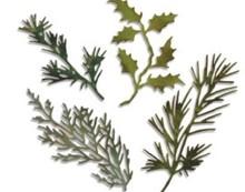 Sizzix Estampación y embutición de la plantilla, thinlits Sizzix, Juego de 4 ramas con hojas