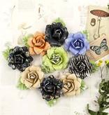 Prima Marketing und Petaloo forskellige blomster fra Prima blomst, 9 stykker