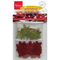 Knutsel een set voor het ontwerpen van hun eigen Christmas Rose
