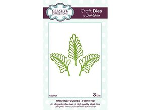 Creative Expressions Stamping and Embossing stencil, metal stencil 3 Ferns
