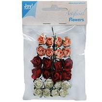 24 roosjes, 3 kleuren