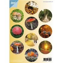 A4 Gestantzte Bogen: Herbst