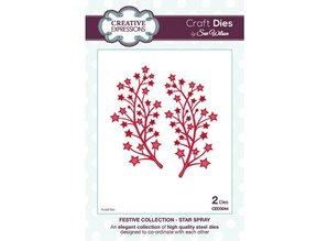 Creative Expressions Cutting and embossing stencils branch with stars