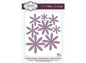 Creative Expressions Stamping and Embossing stencil, flowers
