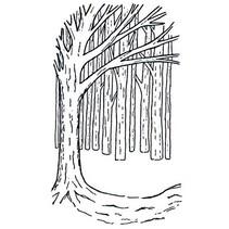 Gummistempler, baggrund Tree