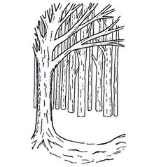 Creative Expressions Rubber stamps, background Tree