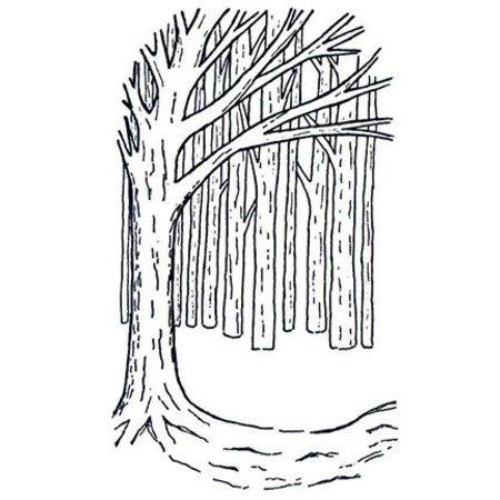 Creative Expressions Gummi Stempel, Hintergrund Baum