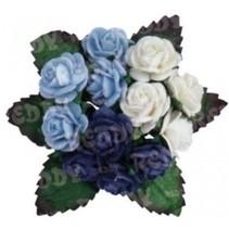 Mini-Röschen, h'blau, d'blau, weiß