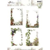 A4 blad van foto's mooie omlijsting