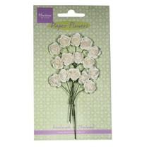Papieren bloem, Rose, White
