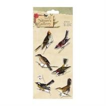 pájaros 3D, 6 piezas