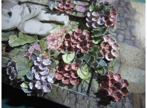 Exlusiv Bastelset per i fiori pinze: motivi della Staf Wesenbeek