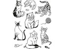 Viva Dekor und My paperworld Transparent stamps, cats