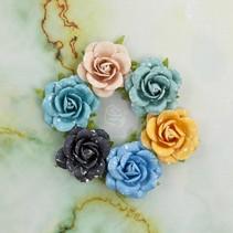 Flores orilla del mar Mariscos