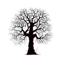 Stempel / Stamp: Transparent timbro trasparente: abbastanza albero