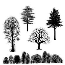 Stempel / Stamp: Transparent timbro trasparente: alberi Paesaggio