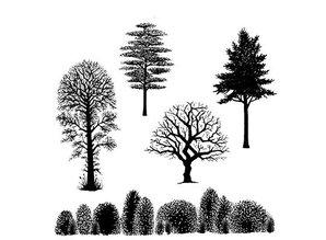 Stempel / Stamp: Transparent Transparent stempel: Træer landskab