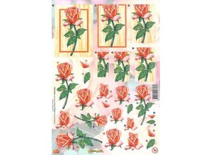 BILDER / PICTURES: Studio Light, Staf Wesenbeek, Willem Haenraets A4 cut sheets: Orange roses