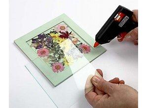 Exlusiv Et sæt af tørrede og pressede blomster