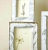 Exlusiv Ein Set getrocknete und gepreßte Blumen