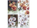 BILDER / PICTURES: Studio Light, Staf Wesenbeek, Willem Haenraets 3D Die cut sheets: Flowers