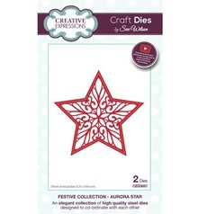 Creative Expressions Punching and embossing template: filigree star