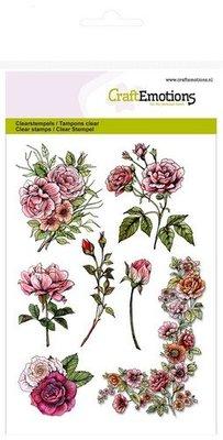 Wild Rose Studio`s A6 sellos transparentes, rosas