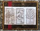 Leane Creatief - Lea'bilities Embossing Folder: Spinnewebe pattern