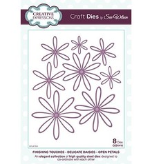 Creative Expressions Stamping and embossing stencil, Delicate Daisies, flowers