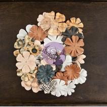 Cartógrafo, 36 flores