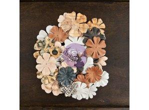 Prima Marketing und Petaloo Cartographer, 36 flowers