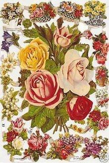 BILDER / PICTURES: Studio Light, Staf Wesenbeek, Willem Haenraets A5, scarti con i fiori