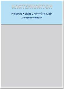 DESIGNER BLÖCKE  / DESIGNER PAPER Karton A4, lysegrå