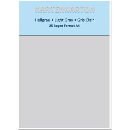 DESIGNER BLÖCKE  / DESIGNER PAPER Kartenkarton A4, hellgrau