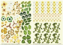 BLUMEN (MINI) UND ACCESOIRES Twin Pack flowerart, gul