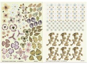BLUMEN (MINI) UND ACCESOIRES Twin Pack Flowerart, marrone