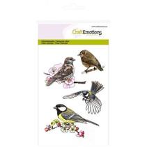 Transparent stamps: Birds