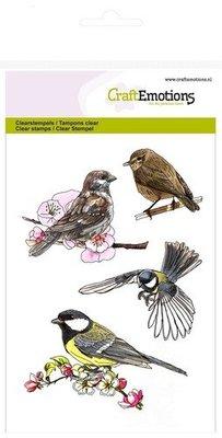 Crealies und CraftEmotions Gennemsigtige frimærker: Fugle