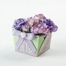 TONIC Fustelle: Intricate Box
