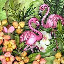 Heartfelt Creations aus USA l'ultima collezione: Tropical Paradise