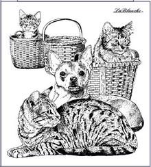 STEMPEL / STAMP: GUMMI / RUBBER Stempel Hund und Katz, ca. 9 x 10 cm