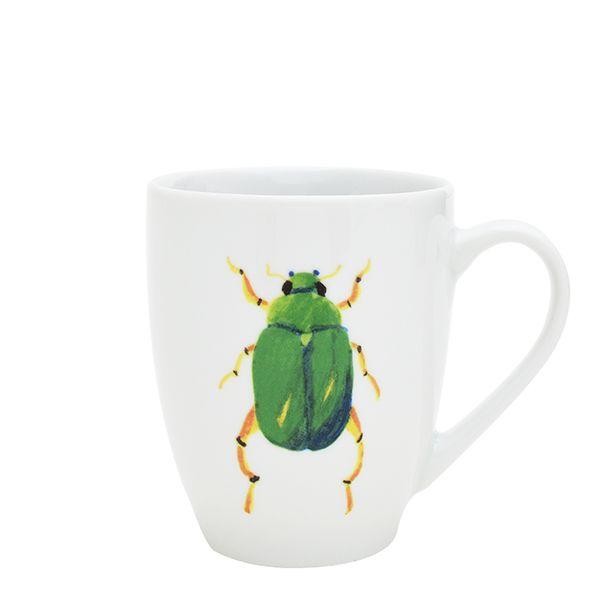 Catchii mok Beetle